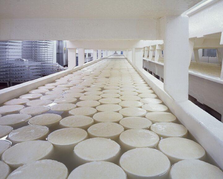 Global Food Safety Initiative (GFSI)